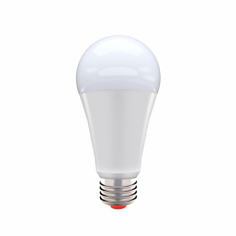 CS A Bulb